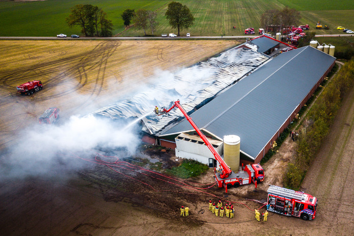 Een luchtfoto van een stal aan de Pannehoeven in Asten-Heusden waar bij een brand duizenden varkens om het leven gekomen zijn.