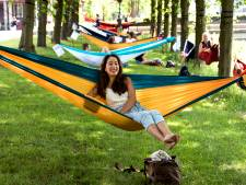 Hangmat ophangen in een Utrechts park? Eerst even toestemming aan de gemeente vragen