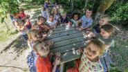 33 leerlingen nemen afscheid van Kreupelschooltje: geen subsidies voor renovatie na 114 schooljaren