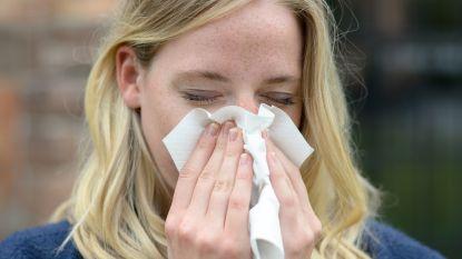 Er hangen al pollen in de lucht: hooikoortsseizoen is begonnen