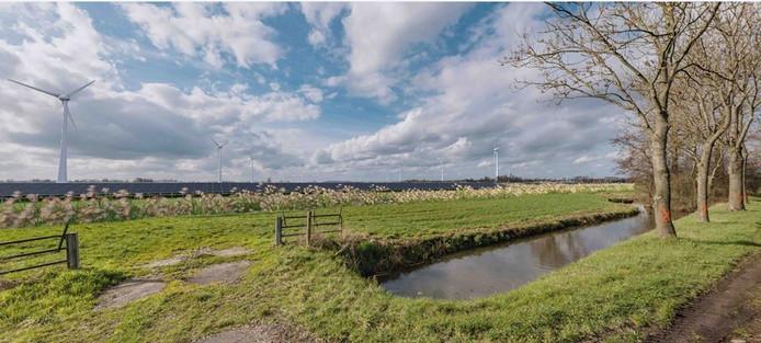 Zo zou de polder Rijnenburg eruit kunnen gaan zien.