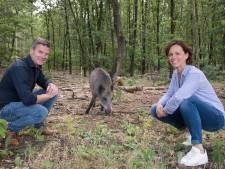 Putten wil lege recreatieparken benutten: 'Geen Efteling, maar bijvoorbeeld iets met midgetgolf'