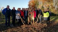 Bufferzone tussen dorp Doornzele en Gentse Kanaalzone weer wat groener: ook jij kan helpen