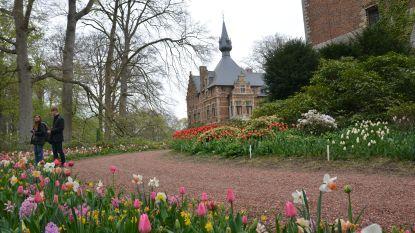 Eigenaars Kasteel van Groot-Bijgaarden schenken 10.000 bloembollen cadeau aan gemeente Dilbeek