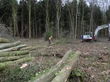 Sint-Michielsgestel vindt bedrijventerrein De Vorst in Boxtel prima stek voor biomassaplein