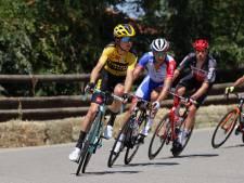 Tolhoek geniet van succes Jumbo-Visma in Tour; hij was er graag onderdeel van geweest