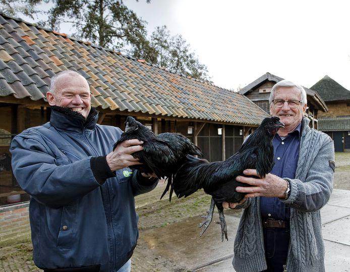 Voorzitter Enri Vermeulen (links) en Ruud Kaasenbrood, fokker van de zwarte kip.