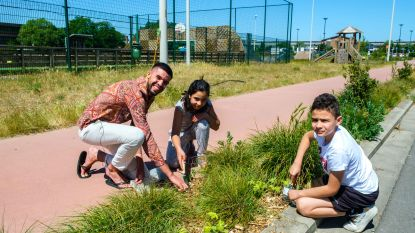 Boomse jongeren planten zaadjes ter ere van corona-overlevenden