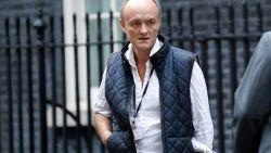 """""""Monster"""" voor de één, """"goeroe"""" voor de ander: portret van Dominic Cummings, het brein van Downing Street 10"""