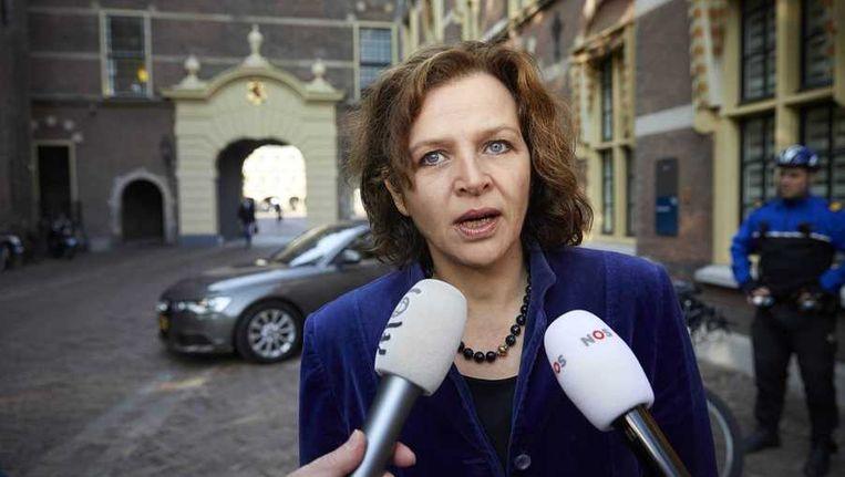 Minister Edith Schippers van Volksgezondheid, Welzijn en Sport. Beeld anp