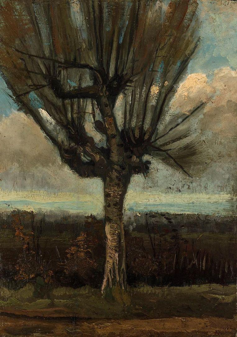 Knotberk, 1885. Beeld Collectie Van Lanschot