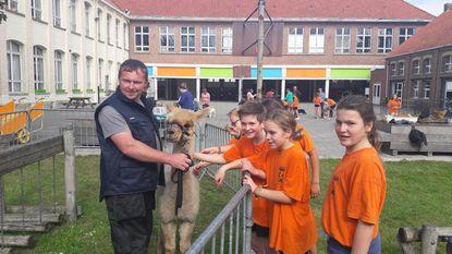 Werelddierendag in basisschool De Ster