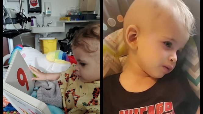 """2-jarige zoontje van Hoogledenaar vecht tegen tumor in het verre Chicago: """"Maar ik wil niet machteloos aan de zijlijn blijven staan"""""""