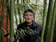 Bamboe voor Rhenense panda's komt uit het Brabantse Asten