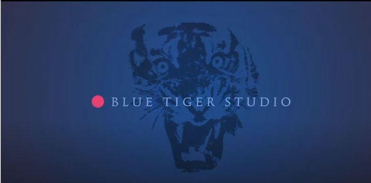 Logo van Blue Tiger Studio Beeld