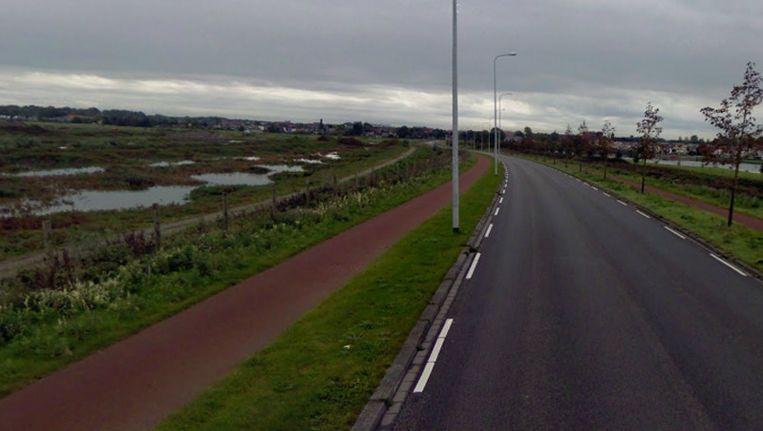 De Johan van Zwedenlaan waar het ongeluk plaatsvond. Beeld Google Streetview
