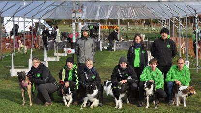 The Green Runners zijn Belgisch kampioen flyball