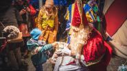 Ruim 50 kleuters hangen samen met Sint tuutje in Tuutjesboom