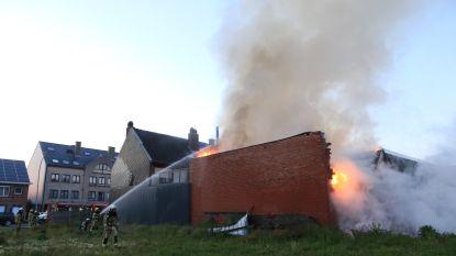 VIDEO. Drugsplantage blootgelegd bij zware brand in magazijn in Stationsstraat