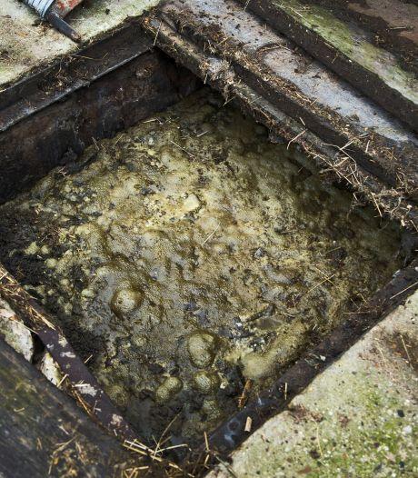 Duizenden liters drugsmest weggehaald, maar boerderij in Schalkwijk stinkt nog steeds