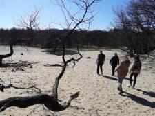 Kwart van Brabant hoort bij nieuw Van Gogh Nationaal Park, provincie dient officieel verzoek in voor toekenning