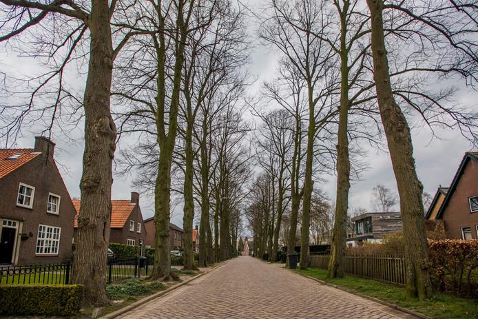 service volwassen dik in de buurt Tilburg