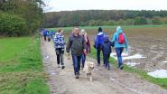 Trage Wegen Dilbeek houdt wandeling