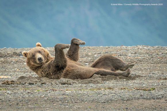 Deze beer moet in Alaska geen rekening houden met de quarantaine, maar dat neemt niet weg dat lichaamsbeweging belangrijk blijft.