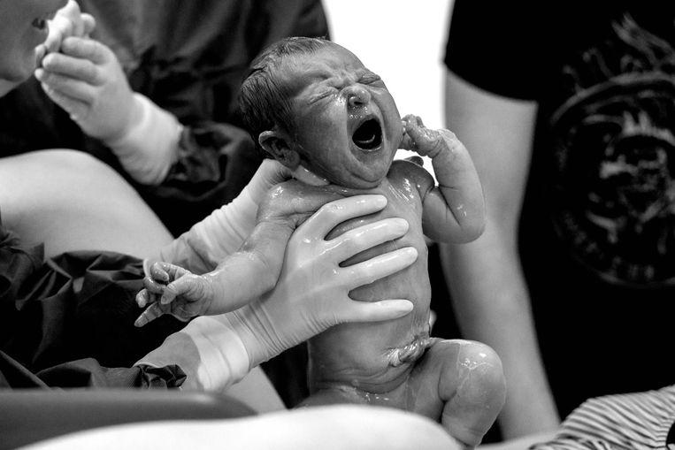De geboortefoto's van Bart waarmee hij in de prijzen is gevallen. Baby Lise ziet het levenslicht.