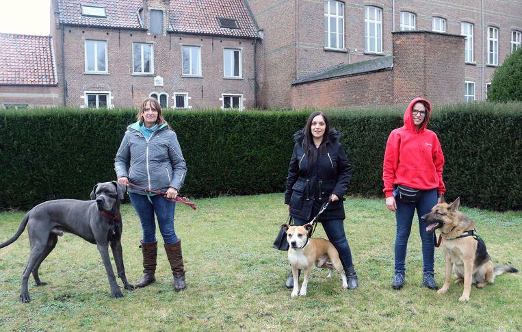 De dierenliefhebbers pleiten al enkele jaren voor een hondenweide in Herentals.