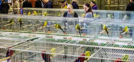 Dieven slaan toe op vogelbeurs: zes dure vogels gestolen