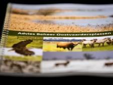 Advies: halveer aantal grote grazers Oostvaardersplassen