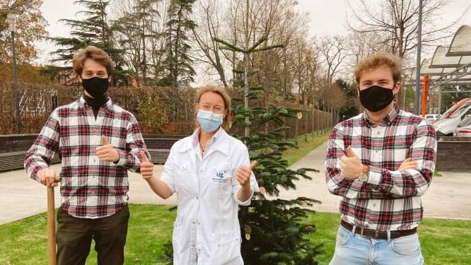 Gentenaars die kerstbomen aan huis leveren schenken versierde exemplaren aan UZ Gent