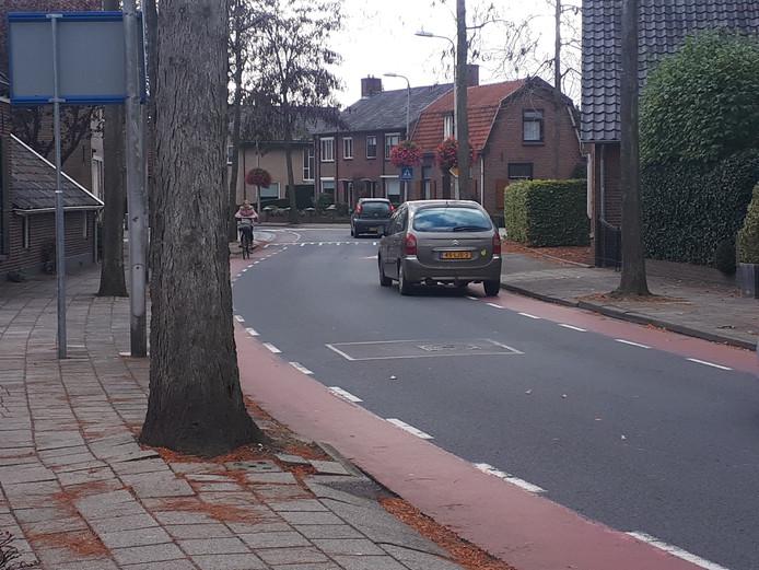 De bomen aan de Larenseweg in Holten zorgen voor onveilige situaties op de trottoirs. Dit wordt onder meer veroorzaakt door wortels die de trottoirtegels opdrukken.