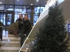 Kerstboom uit Kuinderbos aangekomen in Tweede Kamer