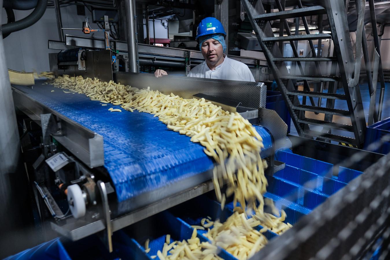 Een medewerker van Aviko bij één van de productielijnen in de fabriek in Steenderen.