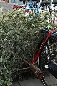 Toch weer kerstbomeninzameling met kinderloterij in Stichtse Vecht