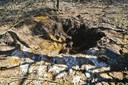 Granaat tot ontploffing gebracht in Riethoven.