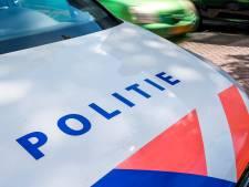 Jongen in elkaar geslagen en van fiets beroofd in park in Papendrecht