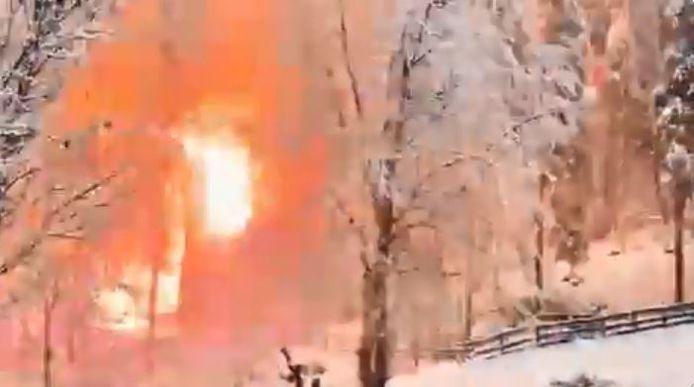 La forêt s'enflamme après qu'une ligne a pris feu.