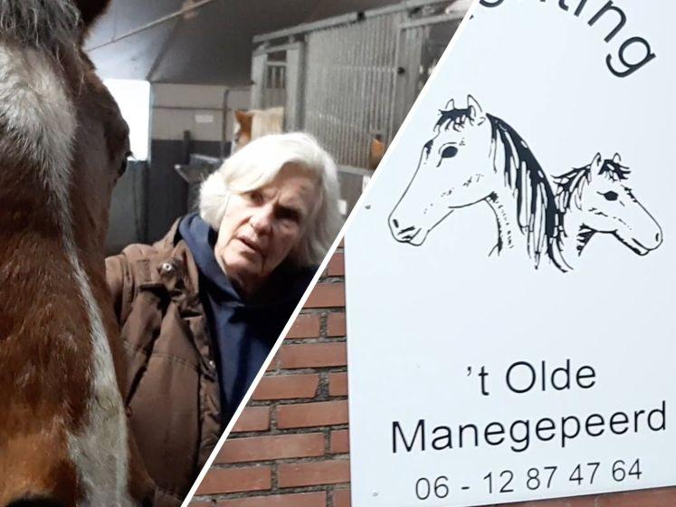 Zonder hulp dreigt slacht voor 40 oude paarden in Dalmsholte