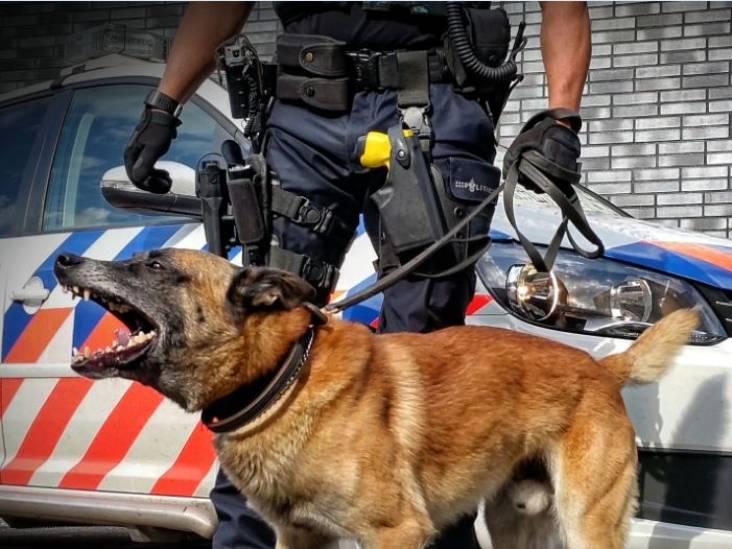 Man stapt op politiehond en begeleider af na opstootje in Breda en wordt gebeten