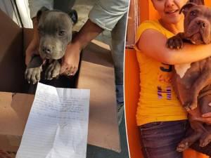 La lettre déchirante d'un garçon qui abandonne son chien à cause de son père violent