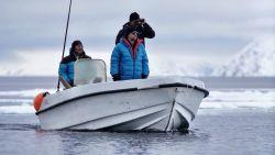"""Tom Waes op zeehondenjacht in 'Reizen Waes': """"Hard om te zien, maar er ís niets anders"""""""
