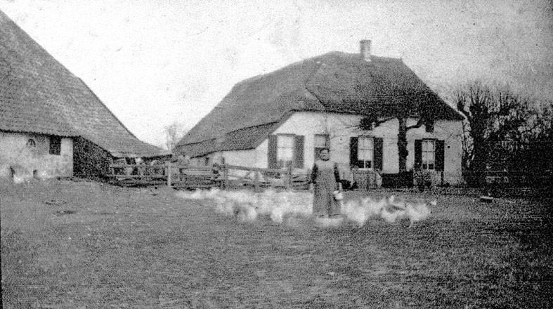 Boerderij omstreeks 1920 op de plek waar de pastorie werd gebouwd van de Maria Koninginkerk.