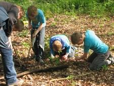 Met het hele gezin speuren naar sporen in het bos