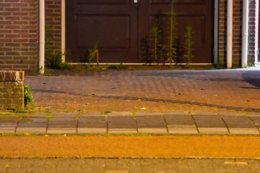 Voor het huis aan de Shakespearelaan in Eindhoven liggen meerdere kogelhulzen.