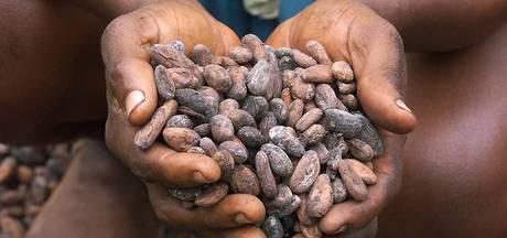 Noodklok klinkt in chocoladewereld