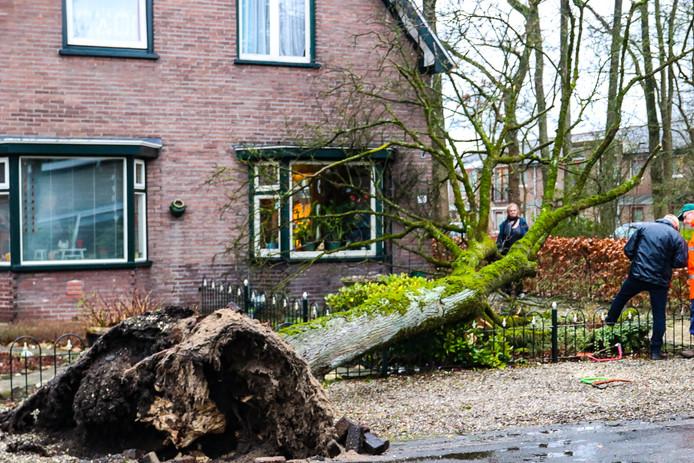 Wonno Postma uit Ugchelen ontsnapte maar net aan het noodlot toen een boom nipt langs zijn huis viel.