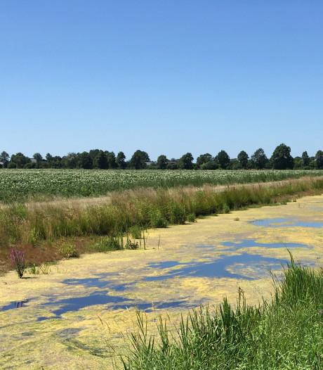 Totaalverbod op gebruik oppervlaktewater in de Achterhoek